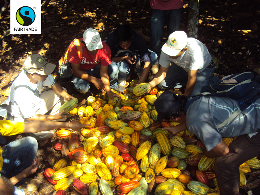 The farmers at Oro Verde Cooperative in Peru with cocoa harvest - Credit Fairtrade International