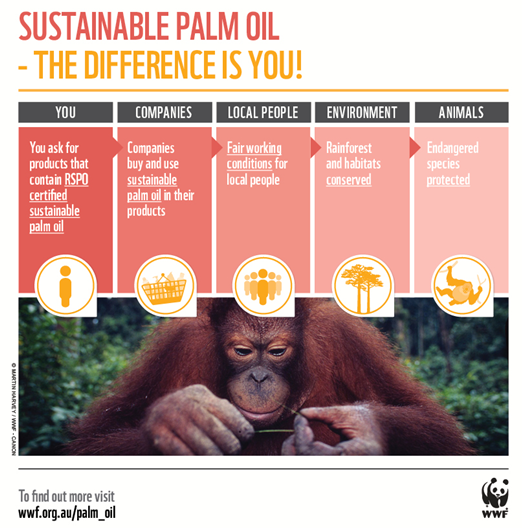 sustainable palm oi solutions