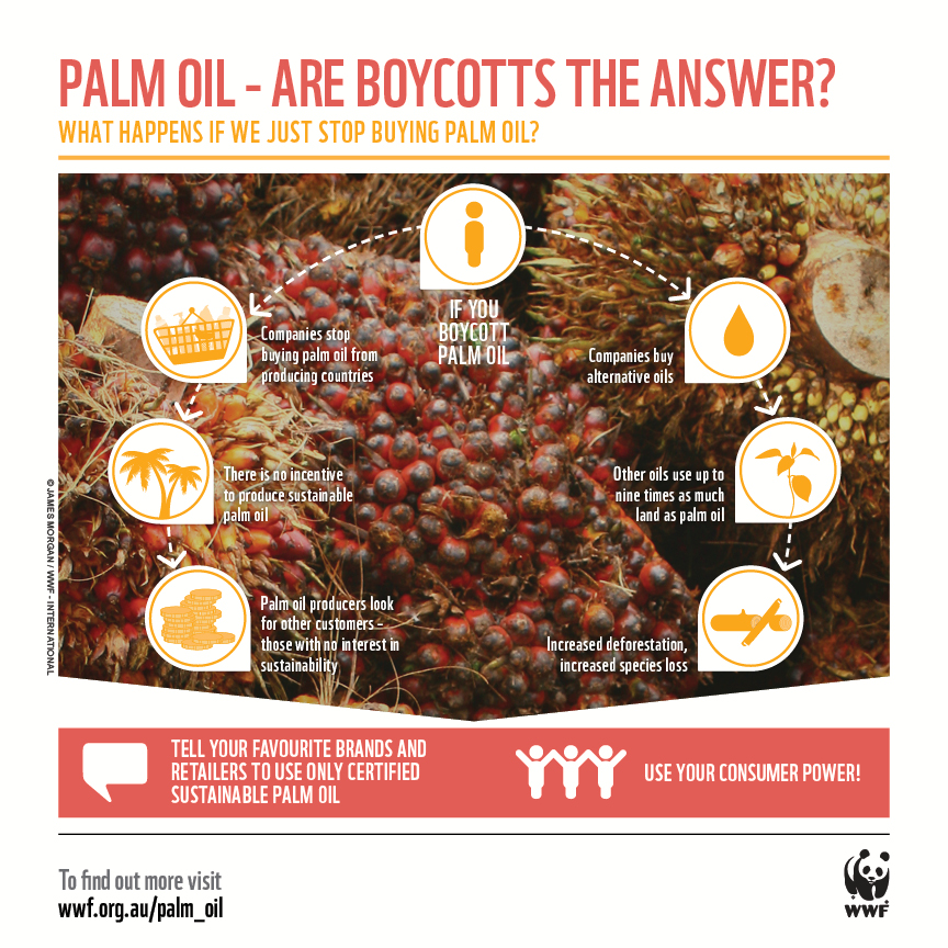 wwf palm oil